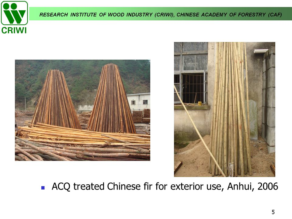 ACQ treated Chinese fir for exterior use, Anhui, 2006