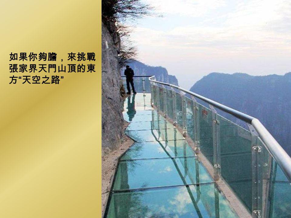 如果你夠膽,來挑戰 張家界天門山頂的東 方 天空之路