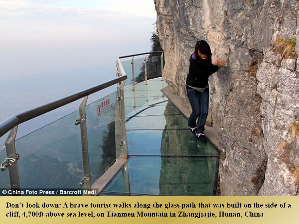 Don't look down: A brave tourist walks along the glass path that was built on the side of a cliff, 4,700ft above sea level, on Tianmen Mountain in Zhangjiajie, Hunan, China