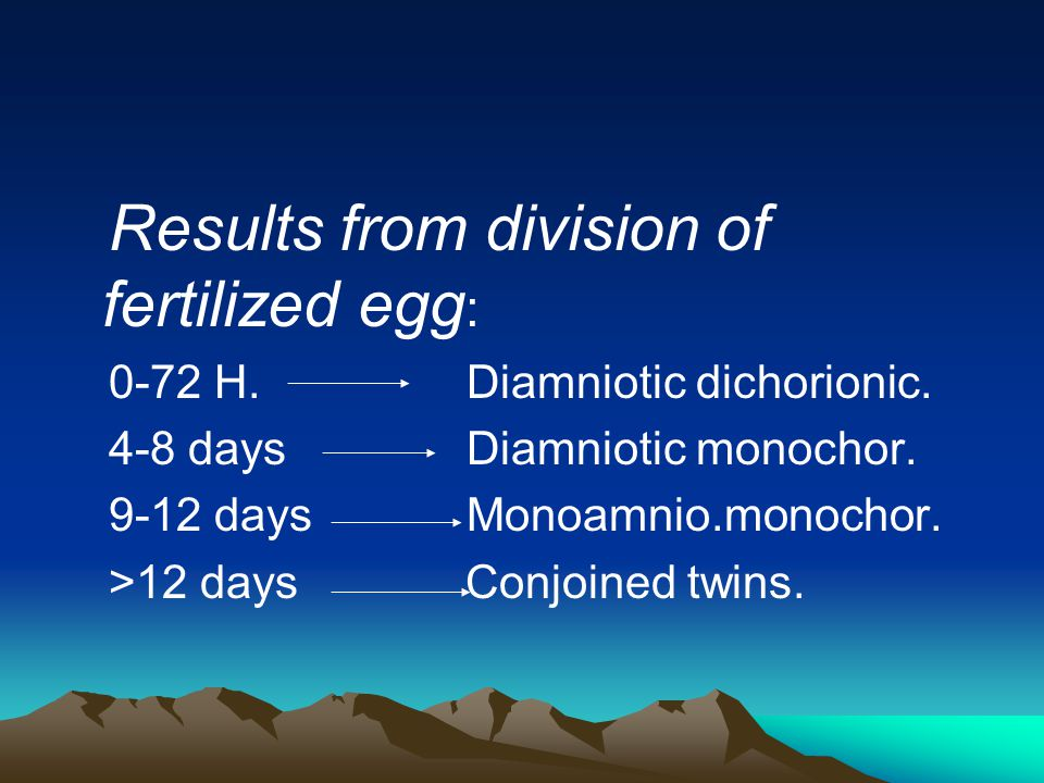 Results from division of fertilized egg: