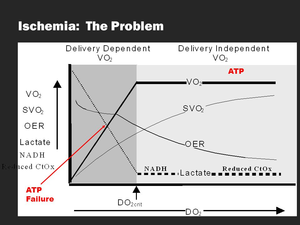 Ischemia: The Problem ATP ATP ATP Failure OER : Oxygen extraction