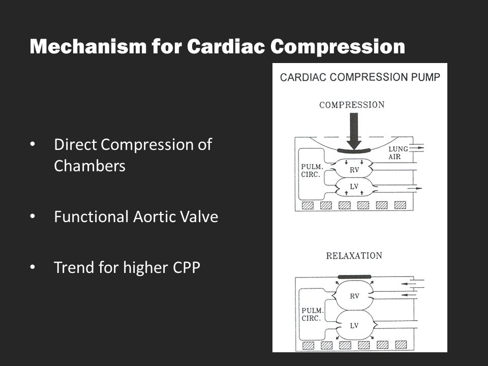 Mechanism for Cardiac Compression