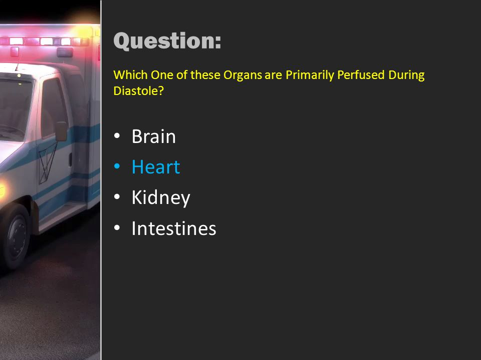 Question: Brain Heart Kidney Intestines