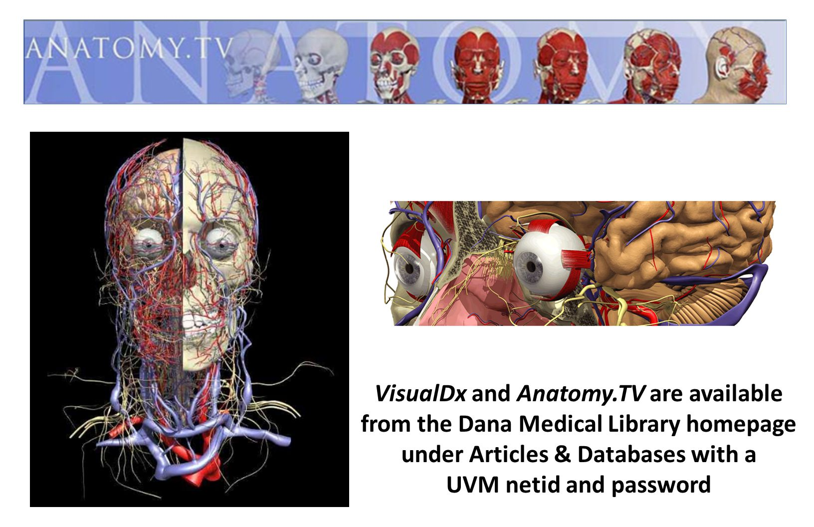 VisualDx and Anatomy.TV are available