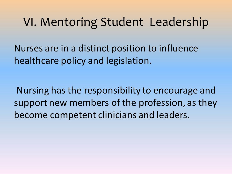 VI. Mentoring Student Leadership
