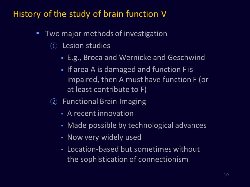 History of the study of brain function V