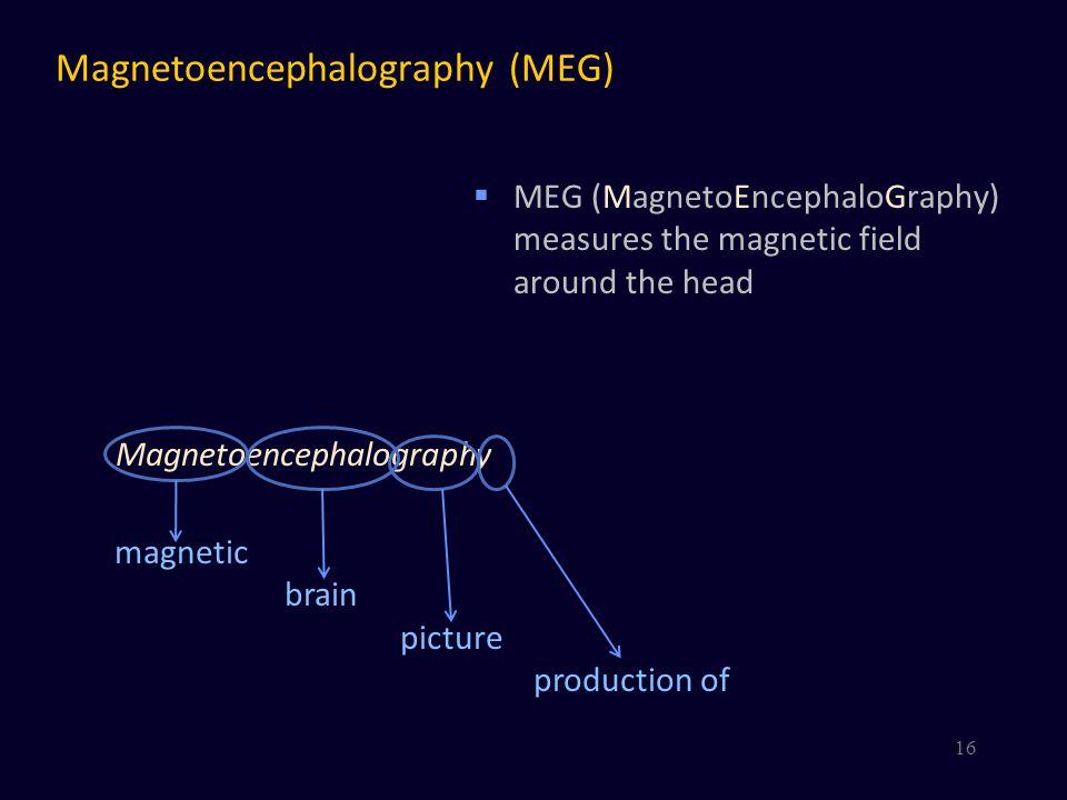 Magnetoencephalography (MEG)