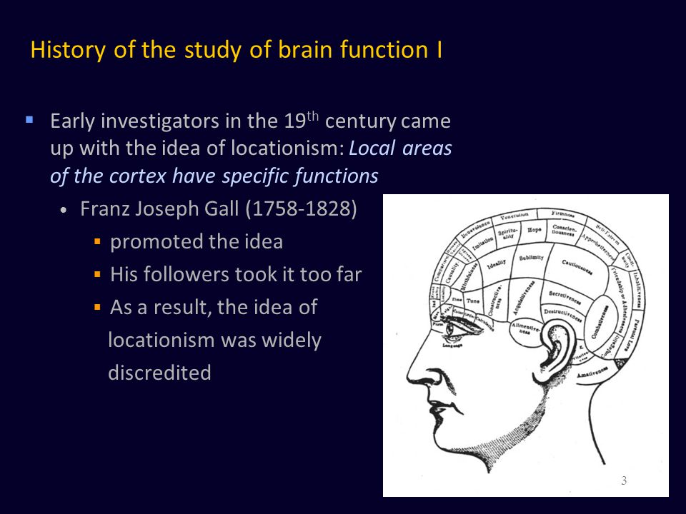 History of the study of brain function I
