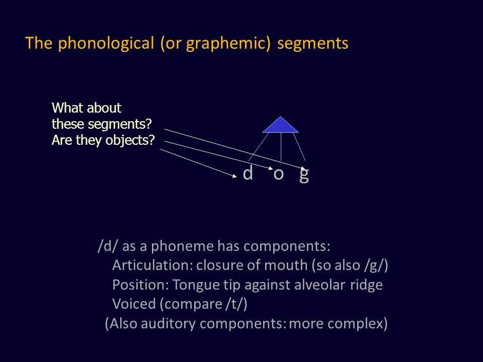 The phonological (or graphemic) segments