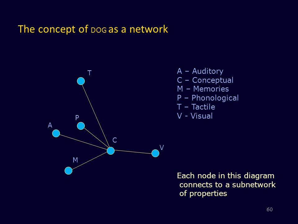 The concept of DOG as a network