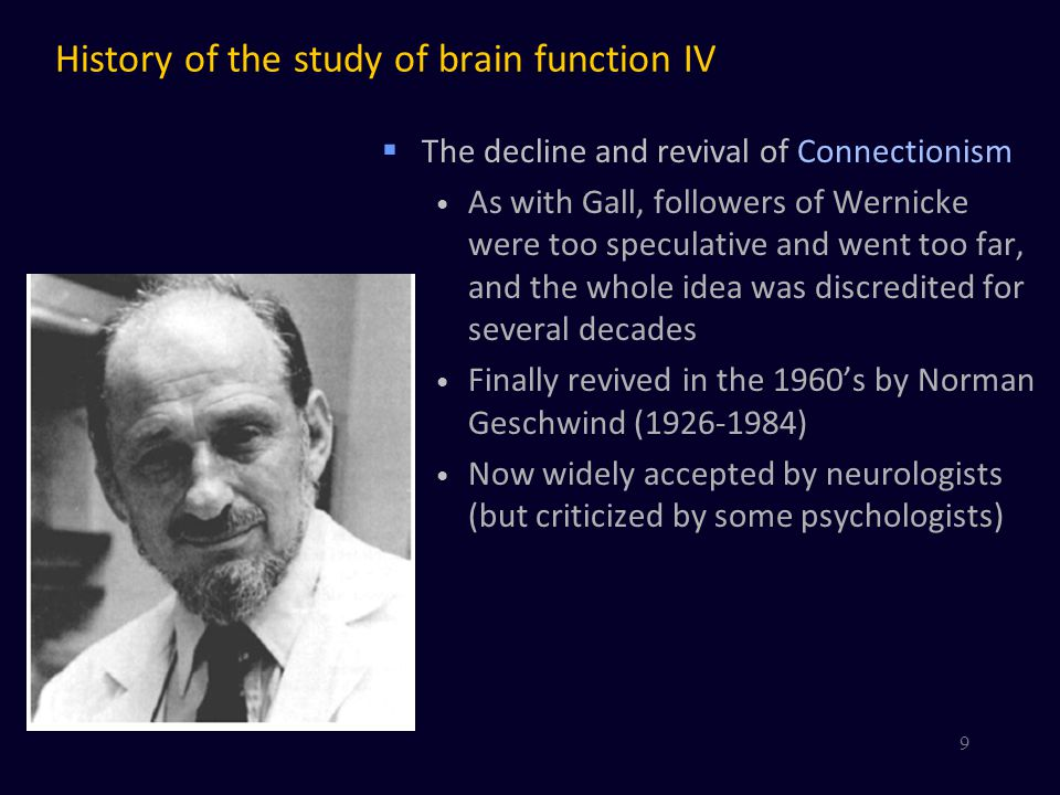 History of the study of brain function IV