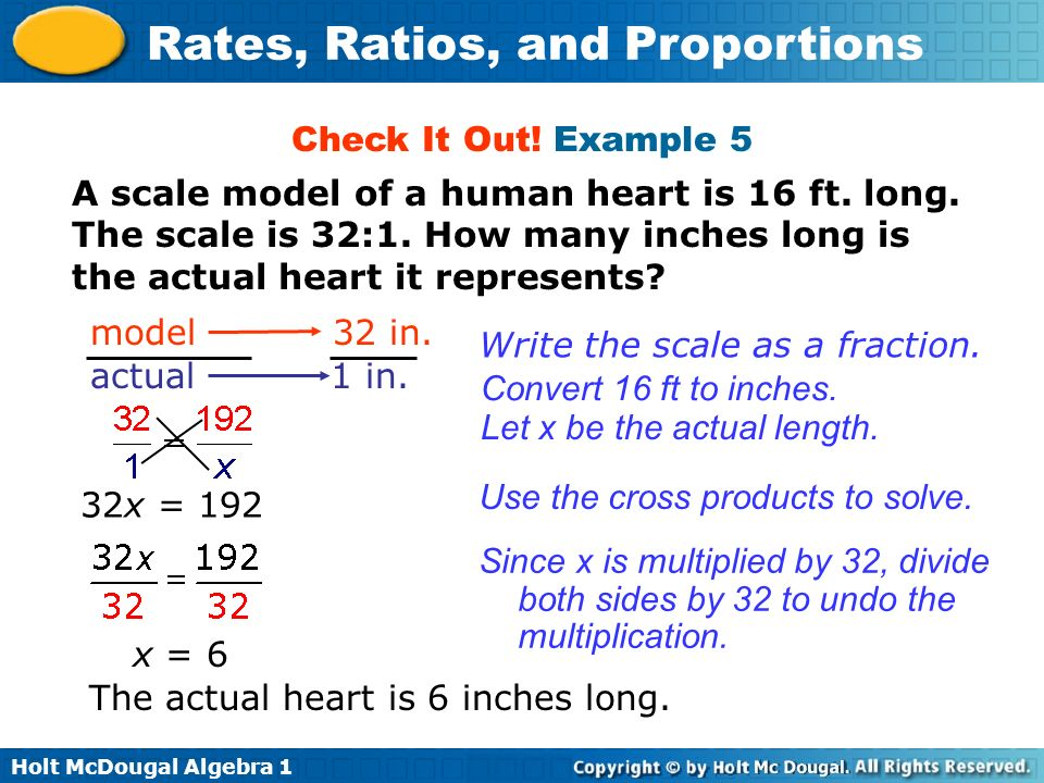 Check It Out! Example 5 A scale model of a human heart is 16 ft. long. The scale is 32:1. How many inches long is the actual heart it represents