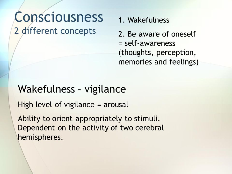 Consciousness 2 different concepts