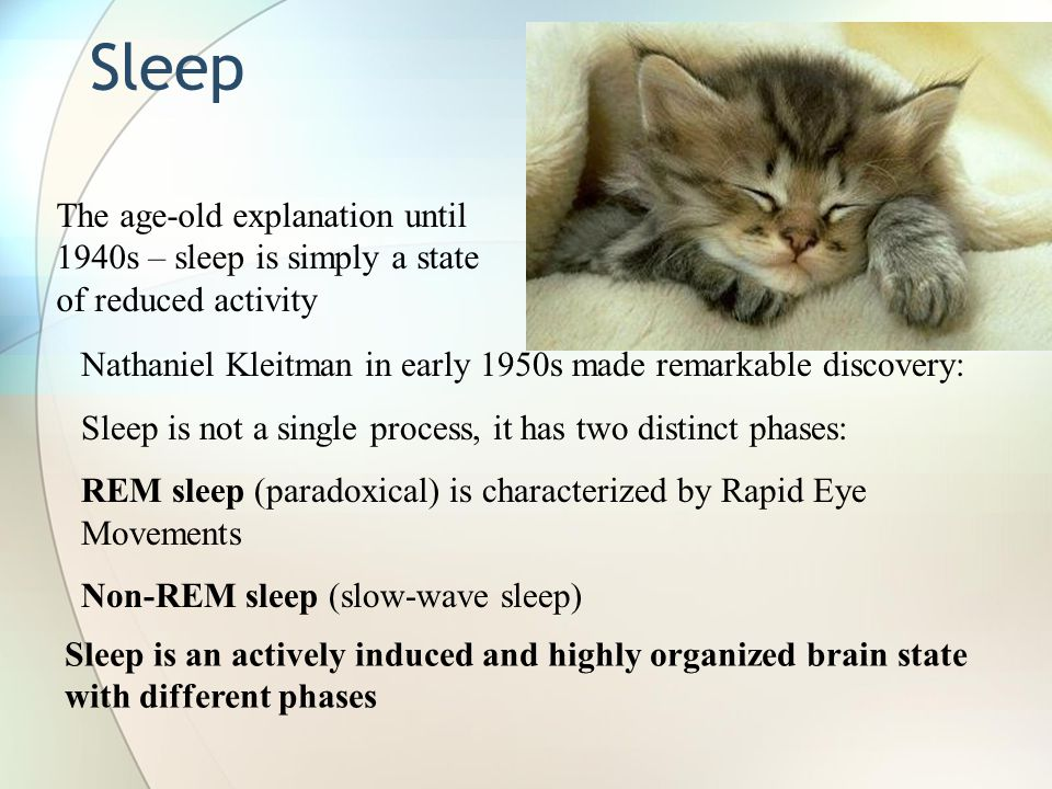 Sleep The age-old explanation until 1940s – sleep is simply a state of reduced activity.