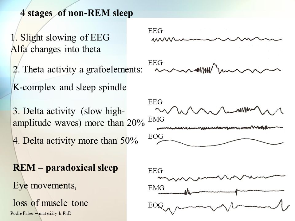 4 stages of non-REM sleep