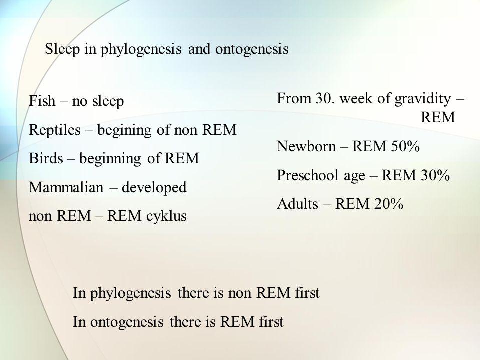 Sleep in phylogenesis and ontogenesis