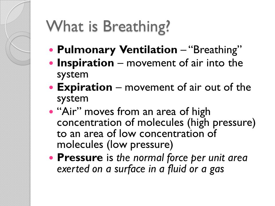 What is Breathing Pulmonary Ventilation – Breathing