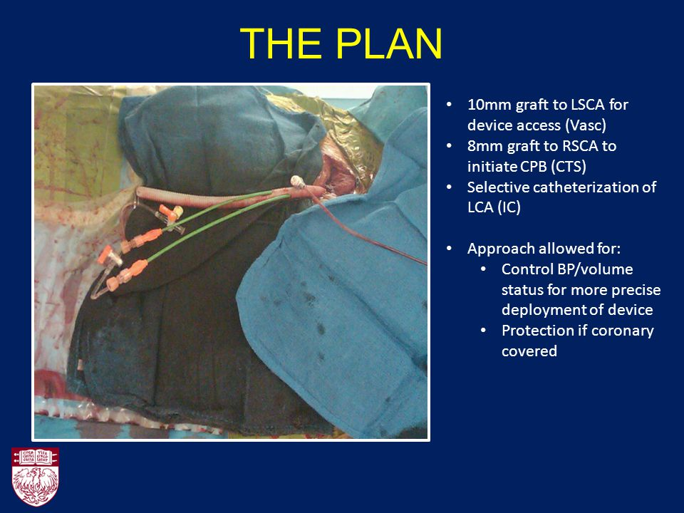 THE PLAN 10mm graft to LSCA for device access (Vasc)