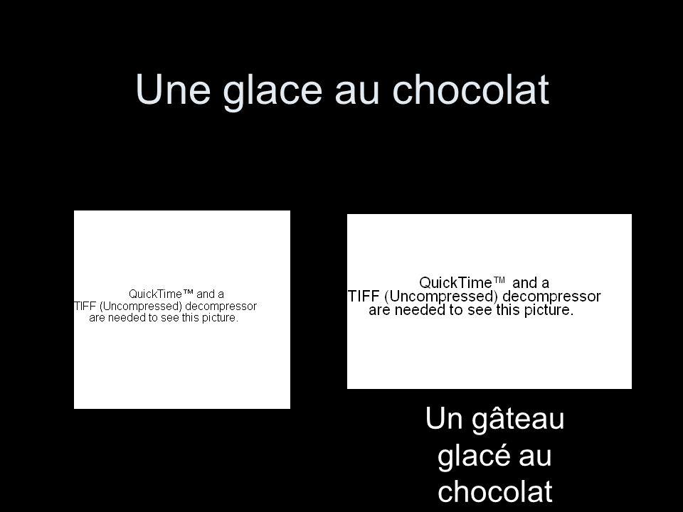 Un gâteau glacé au chocolat