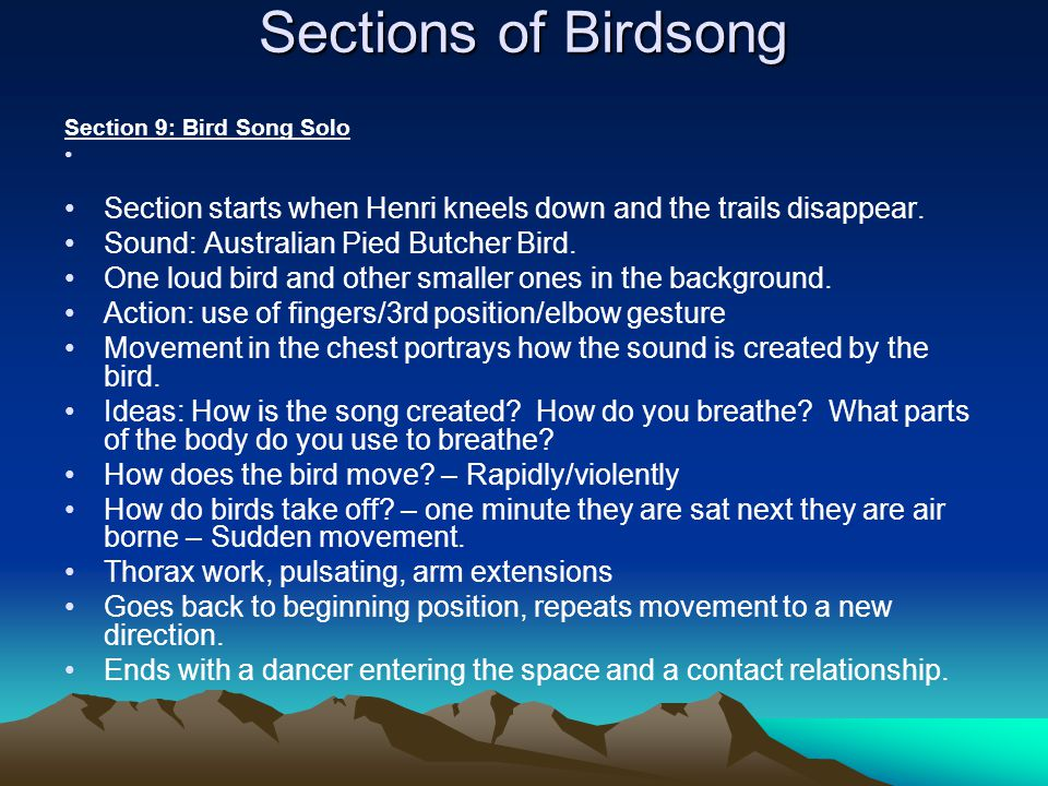 Sections of Birdsong Section 9: Bird Song Solo. Section starts when Henri kneels down and the trails disappear.