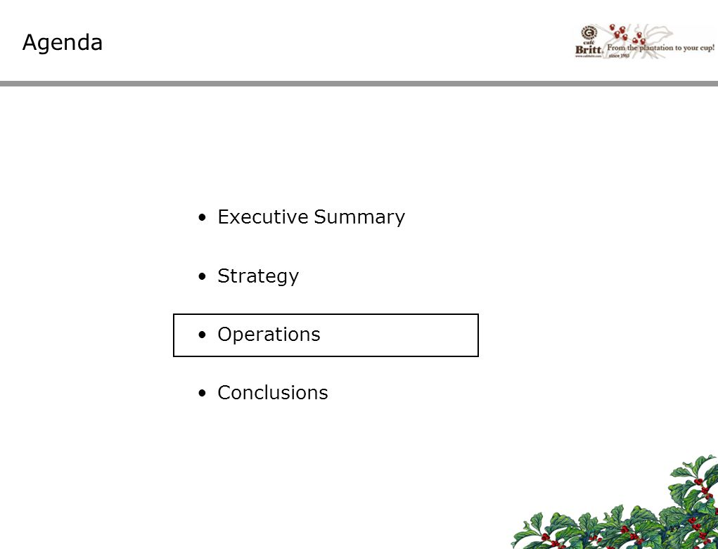 Agenda Executive Summary Strategy Operations Conclusions