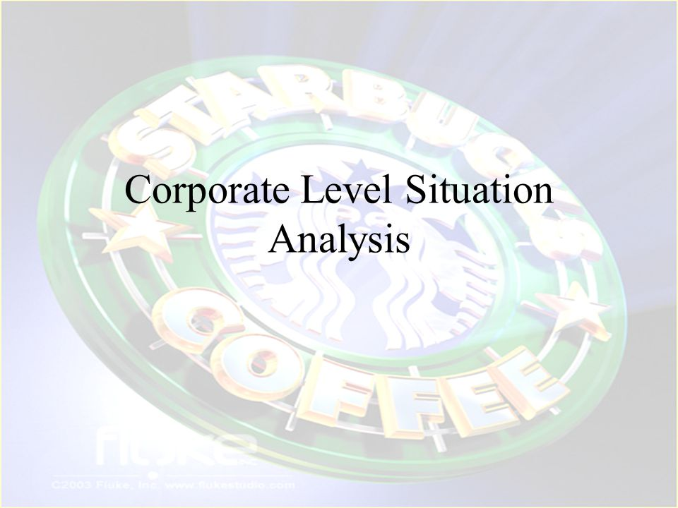Corporate Level Situation Analysis