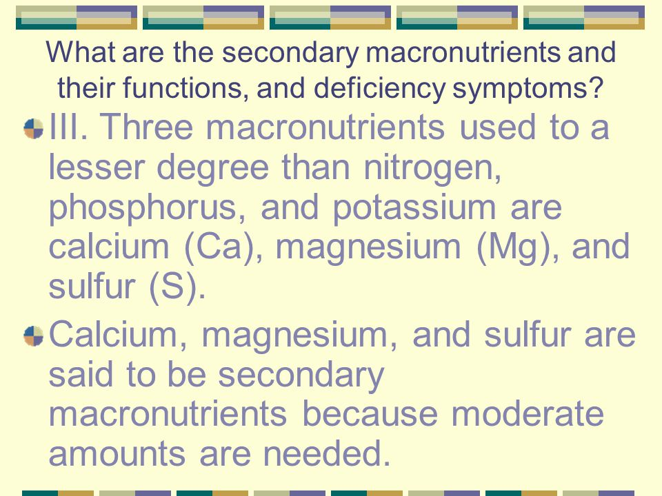 What are the secondary macronutrients and their functions, and deficiency symptoms