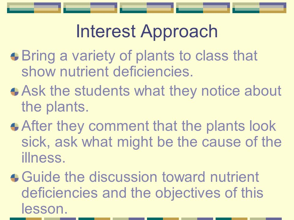 Interest Approach Bring a variety of plants to class that show nutrient deficiencies. Ask the students what they notice about the plants.