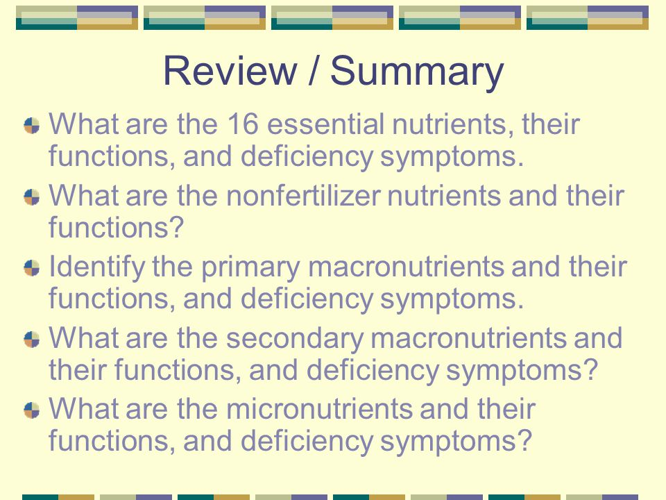 Review / Summary What are the 16 essential nutrients, their functions, and deficiency symptoms.