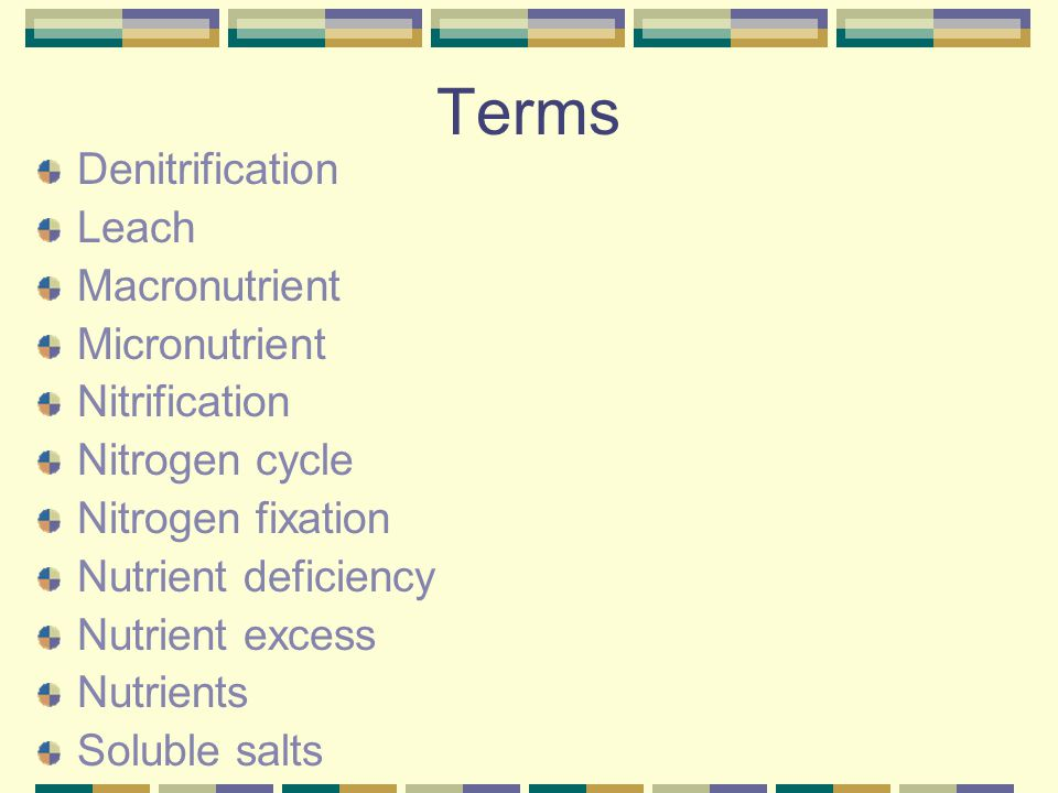 Terms Denitrification Leach Macronutrient Micronutrient Nitrification