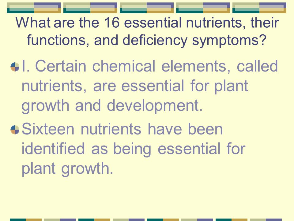 What are the 16 essential nutrients, their functions, and deficiency symptoms