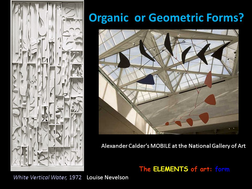 Organic or Geometric Forms
