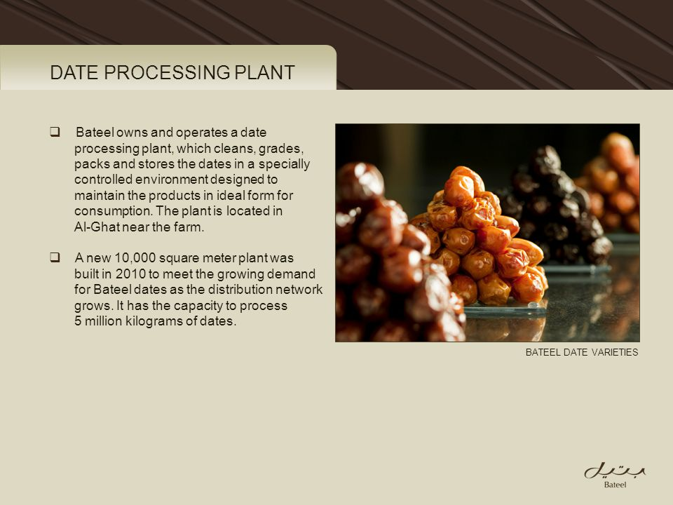 DATE PROCESSING PLANT