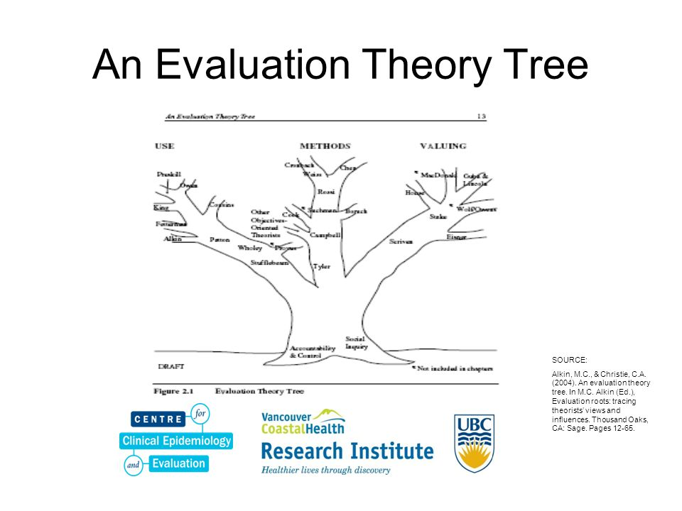 An Evaluation Theory Tree