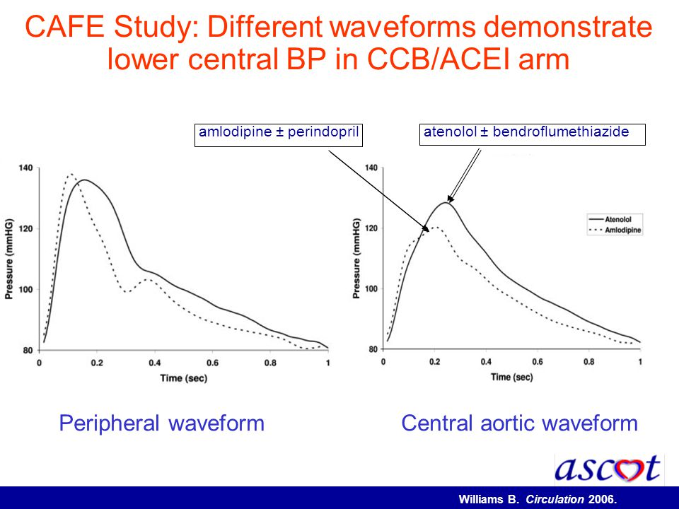 CAFE Study: Different waveforms demonstrate lower central BP in CCB/ACEI arm