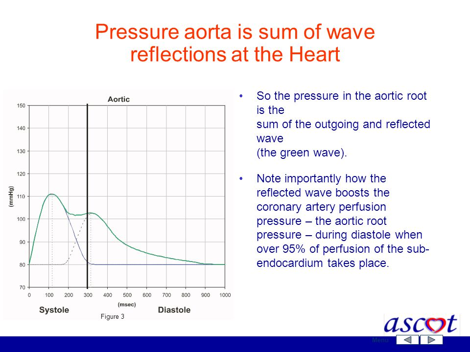 Pressure aorta is sum of wave reflections at the Heart