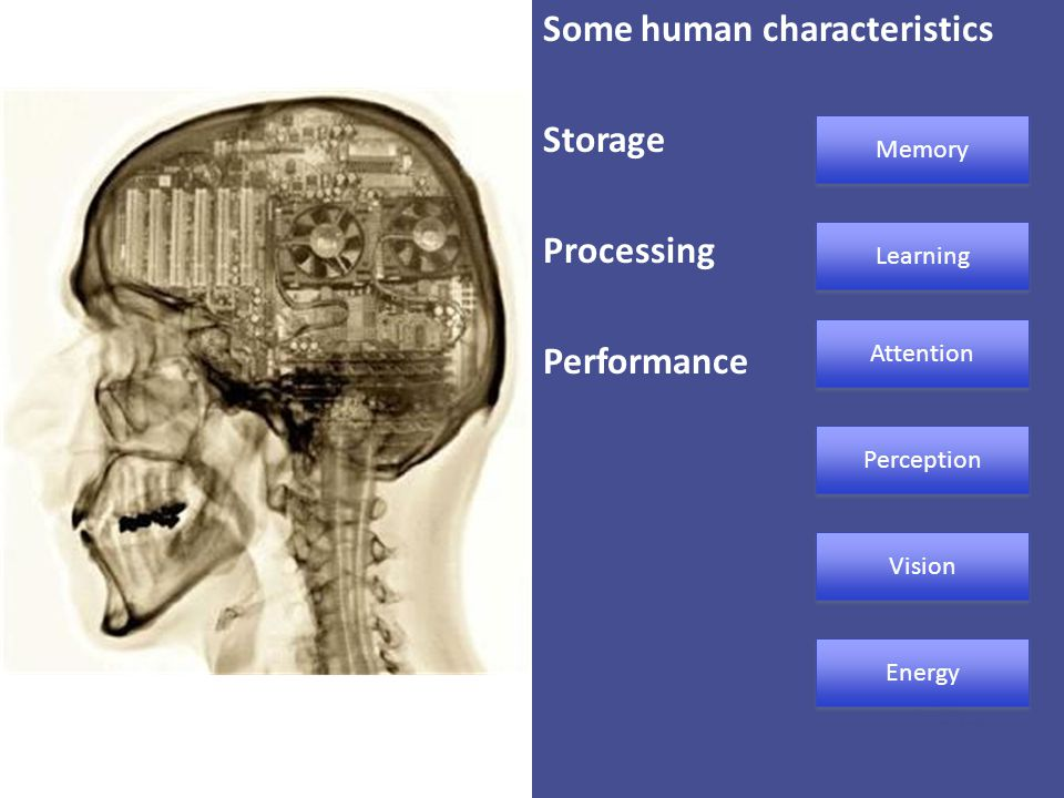 Some human characteristics Storage Processing Performance
