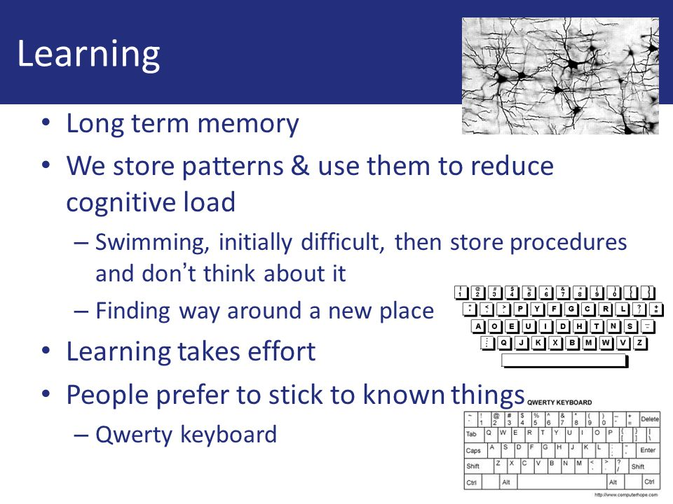 Learning Long term memory