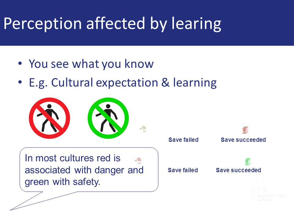 Perception affected by learing