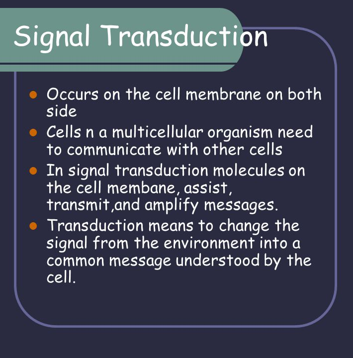 Signal Transduction Occurs on the cell membrane on both side