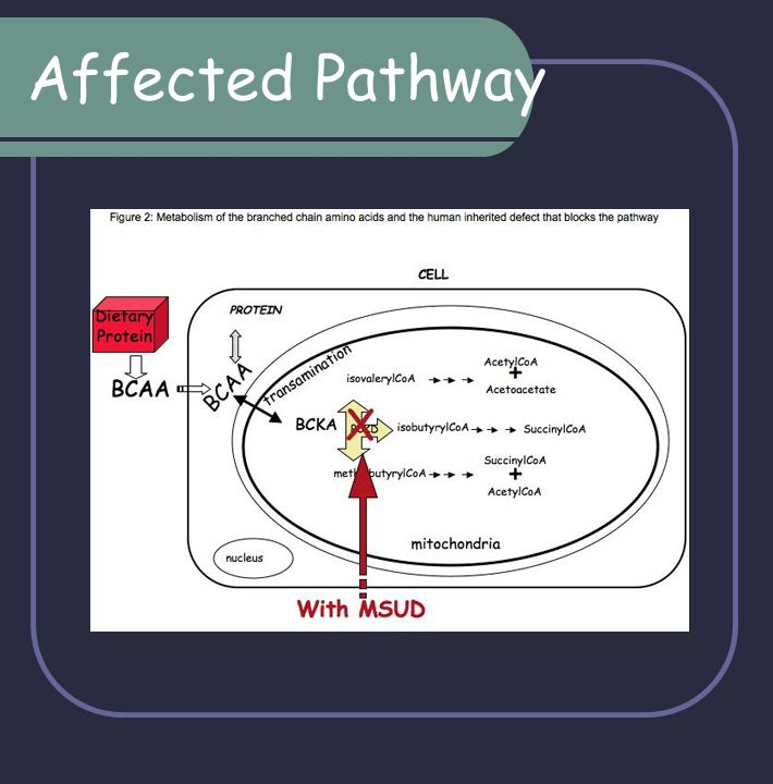 Affected Pathway