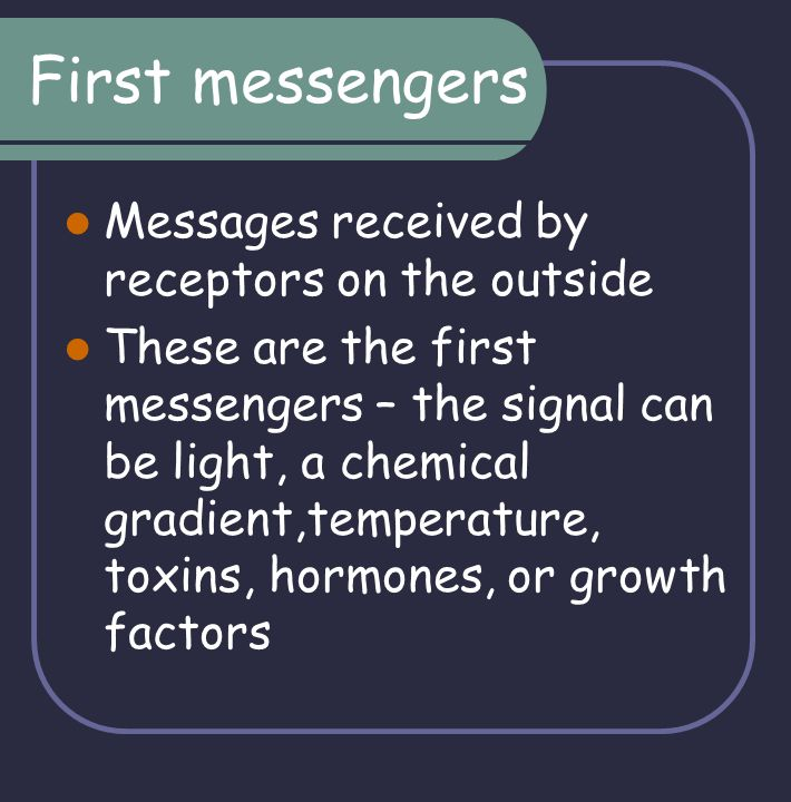 First messengers Messages received by receptors on the outside