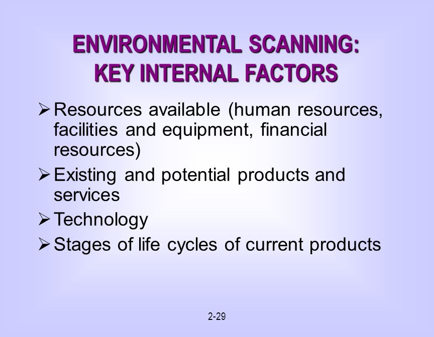 ENVIRONMENTAL SCANNING: KEY INTERNAL FACTORS