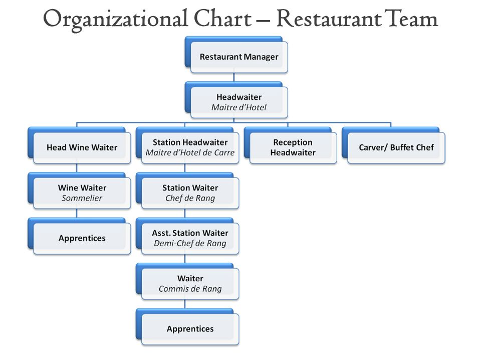 Organizational Chart – Restaurant Team