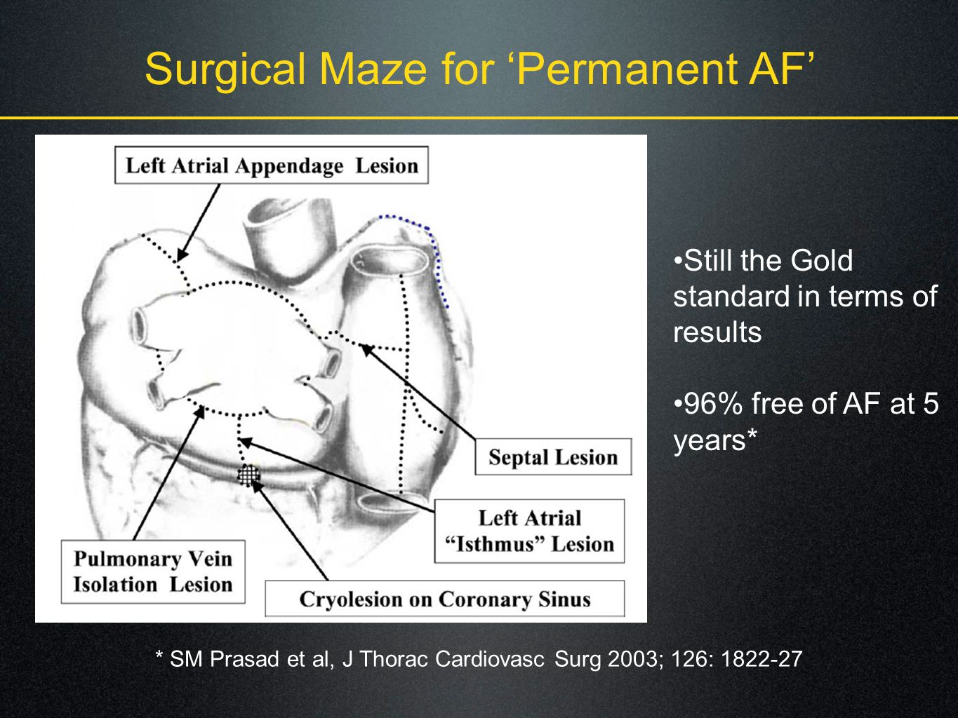 Surgical Maze for 'Permanent AF'