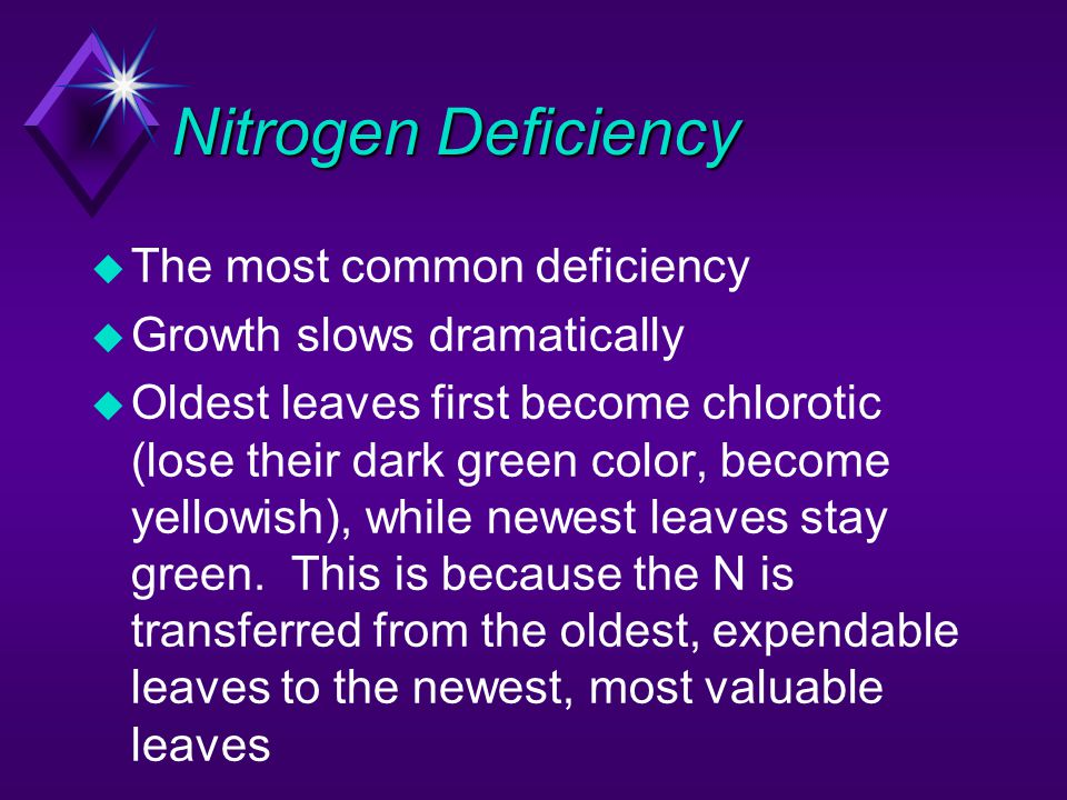 Nitrogen Deficiency The most common deficiency