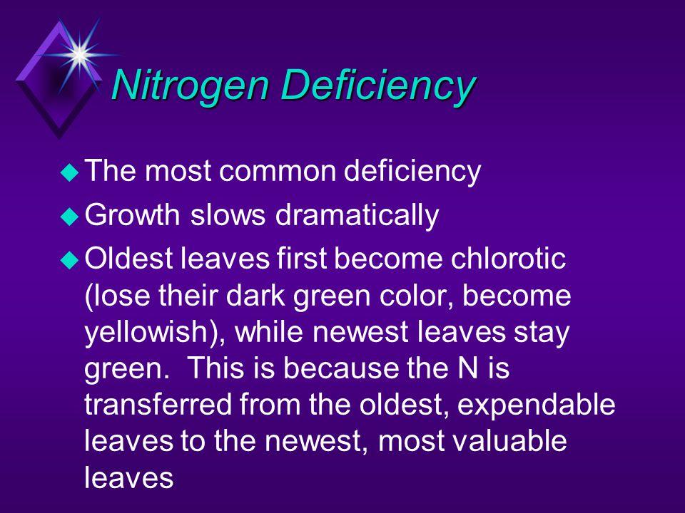 Nitrogen Deficiency The most common deficiency