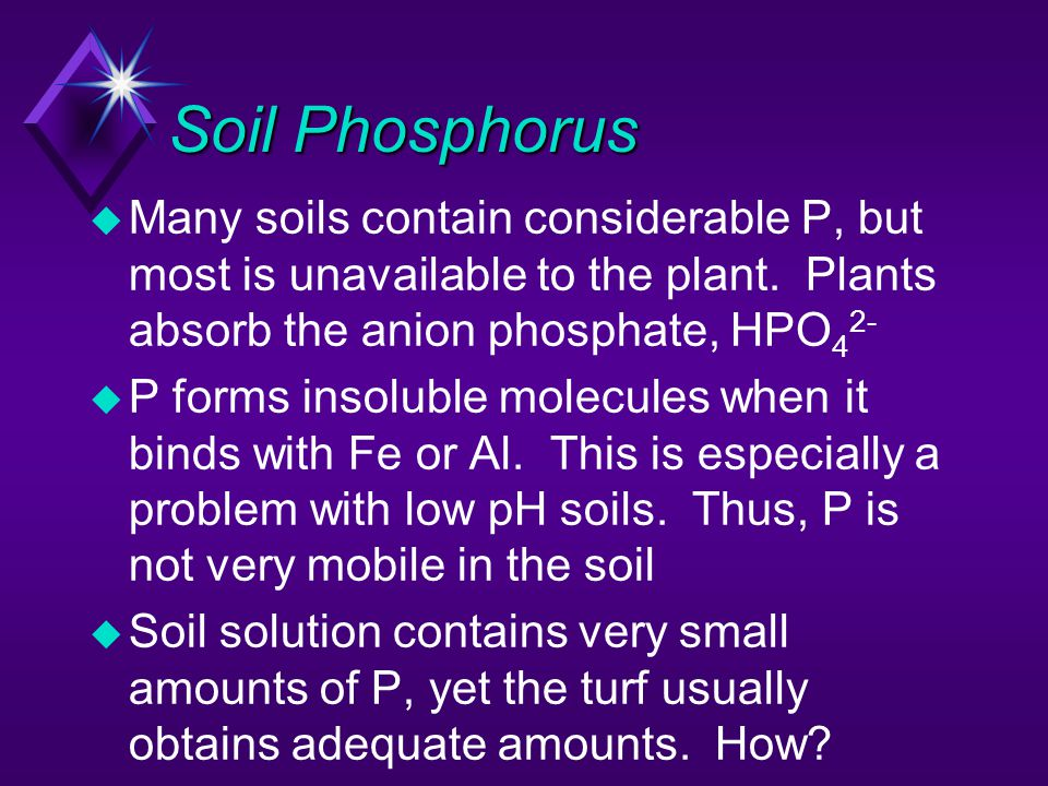 Soil Phosphorus Many soils contain considerable P, but most is unavailable to the plant. Plants absorb the anion phosphate, HPO42-