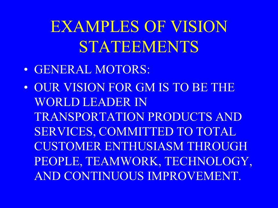 EXAMPLES OF VISION STATEEMENTS