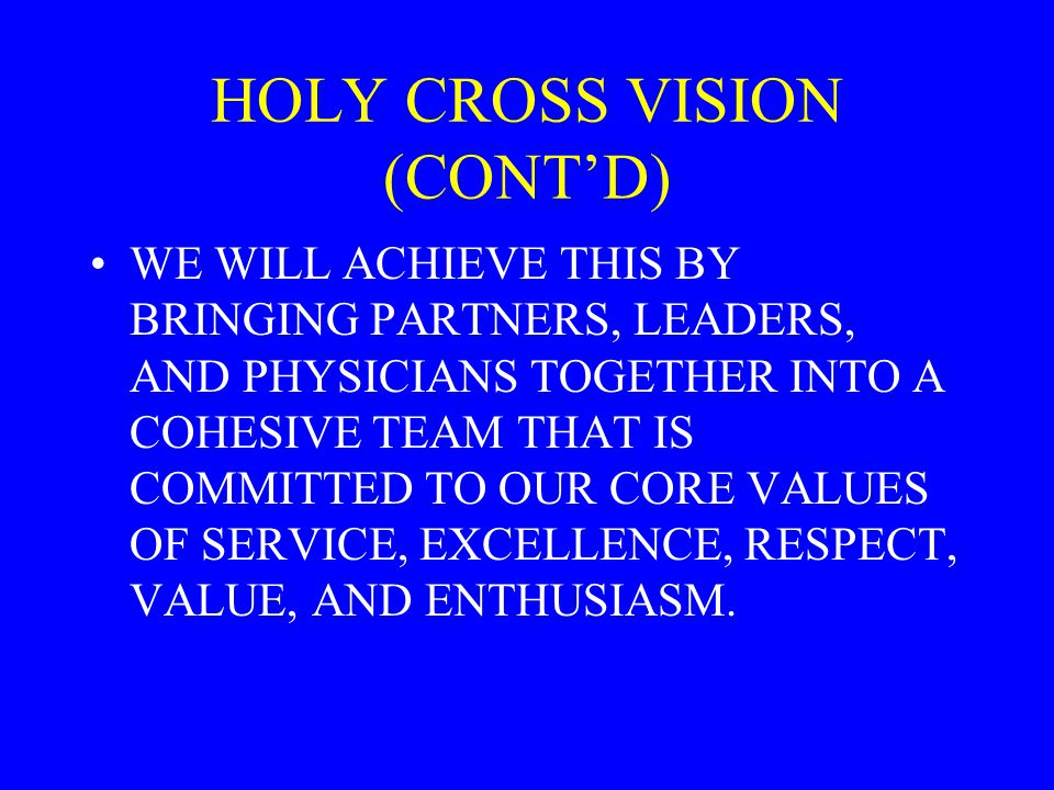 HOLY CROSS VISION (CONT'D)